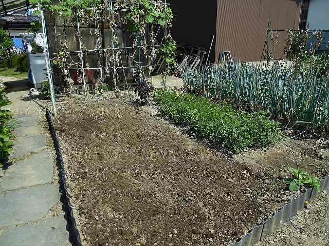 白菜の土作り
