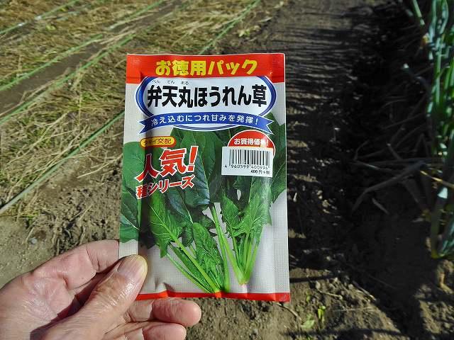 ほうれん草の種